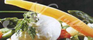 menestra_verduras_huevo-480x210_NutraEase